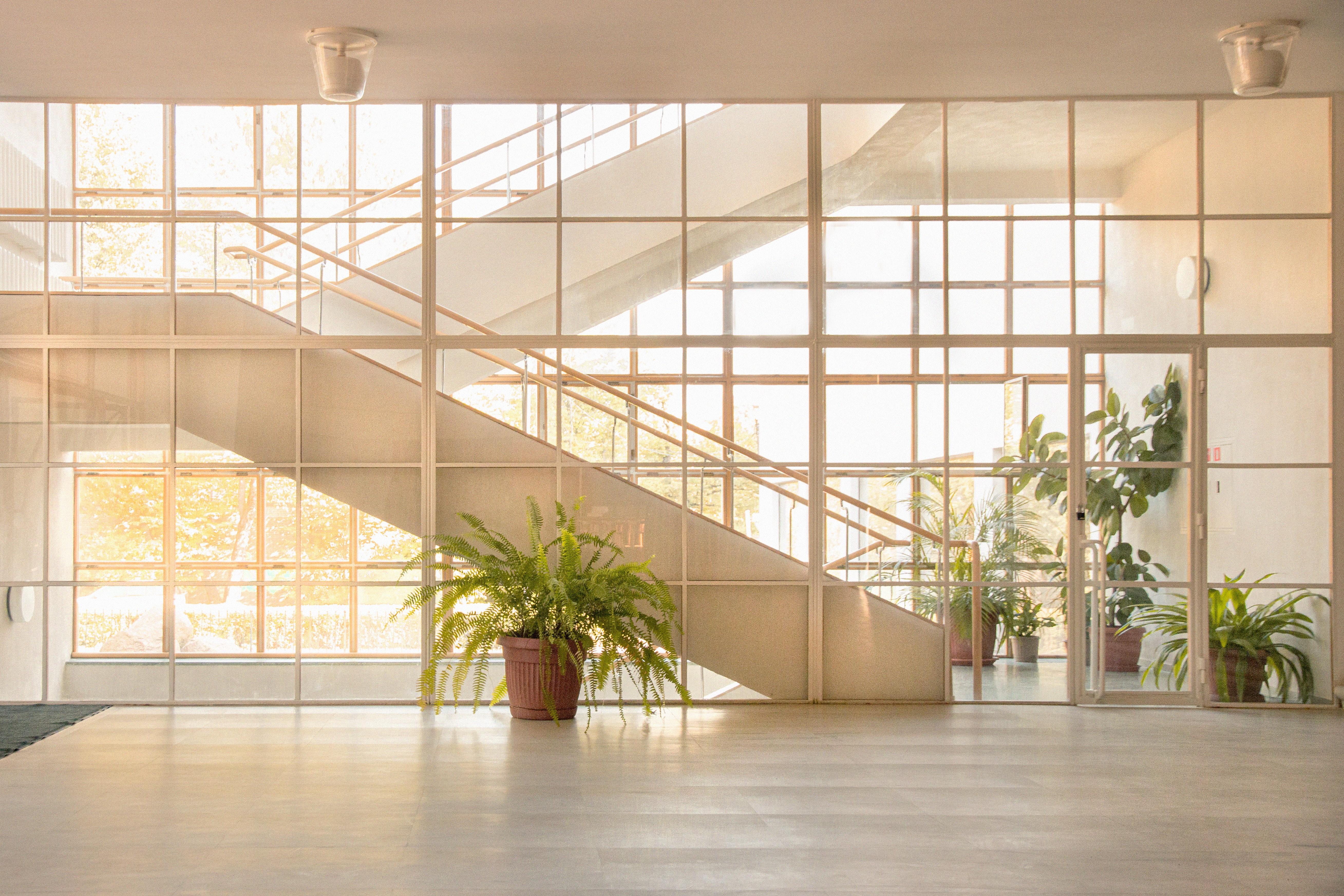 How to Improve Indoor Air Quality: 8 Best Practices